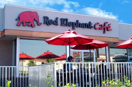 Red Elephant South Tampa