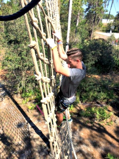 treeumph2