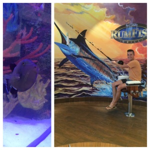 Guy Harvey Outpost St. Pete Beach