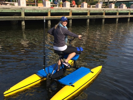 Tampa Bay Water Bike Company Never Have I Ever