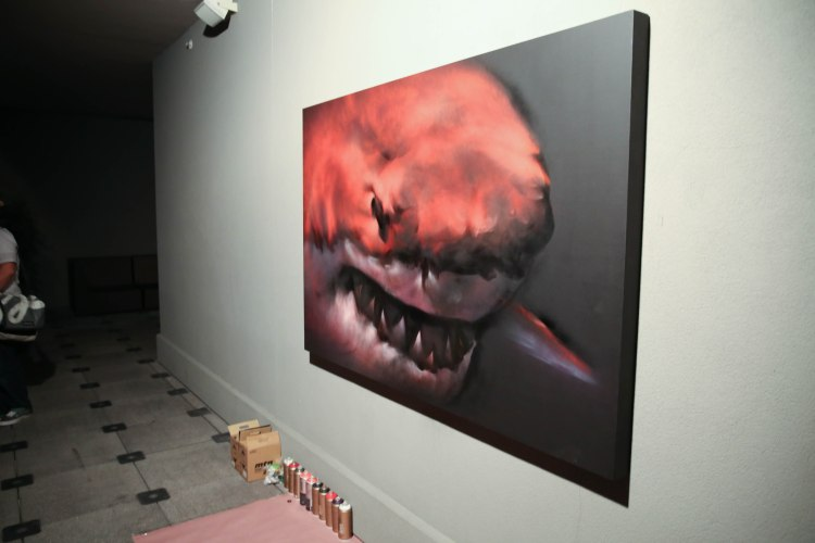 Shark Toof Cass Contemporary Tampa Bay